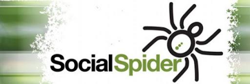 Waltham Forest Hub (Social Spider CIC)